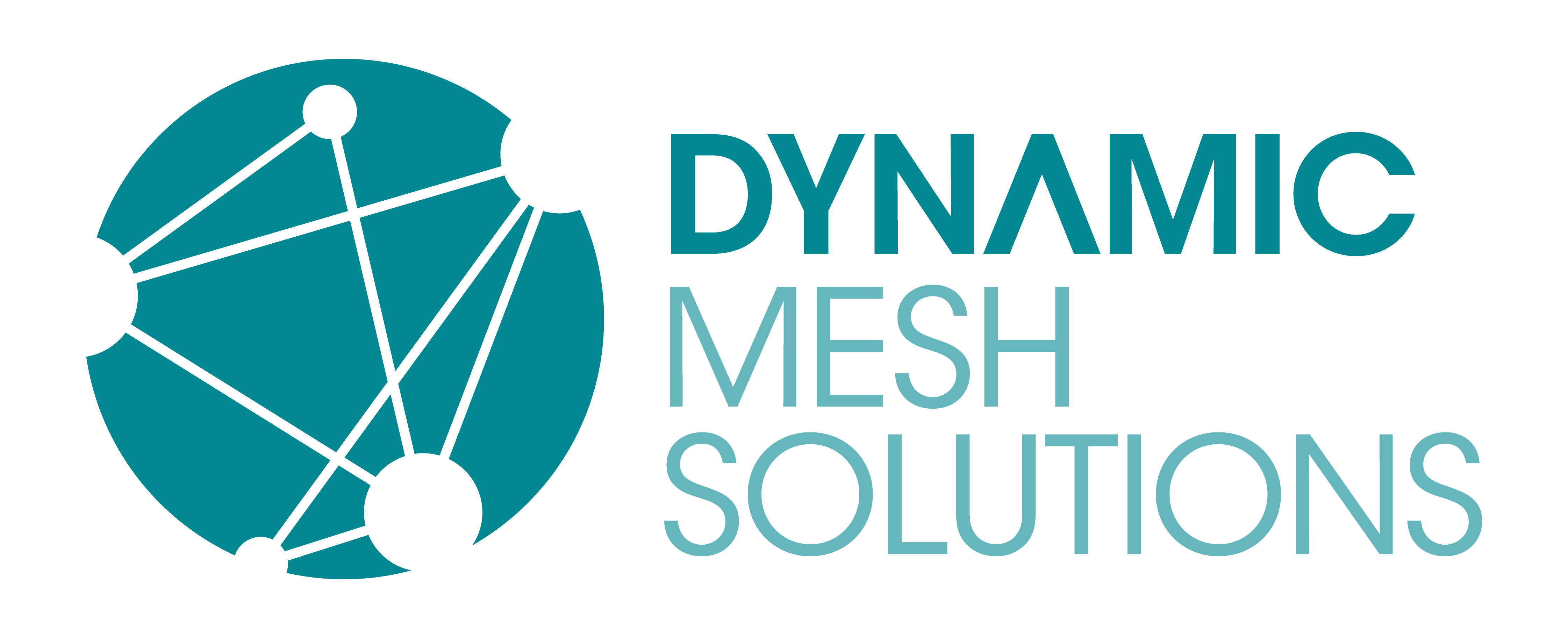 Dynamic Mesh Solutions